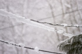 Snow clinging to wires