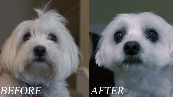 doppler-before-and-after