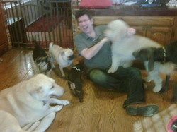geoff with california doggies.jpg