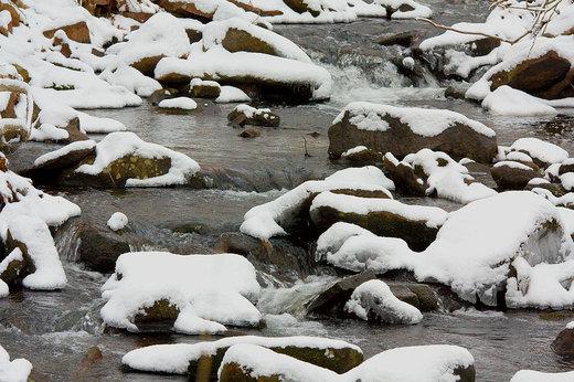 long-fast-snowy-jepps-brook.jpg