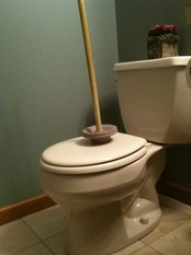 toilet and plunger.jpg