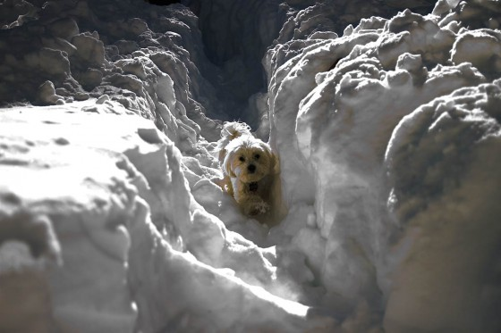 Doppler Versus Snow